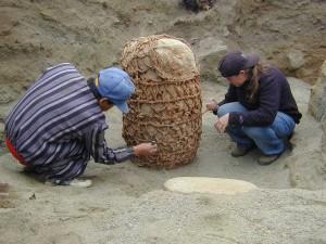 Archaeology (13)